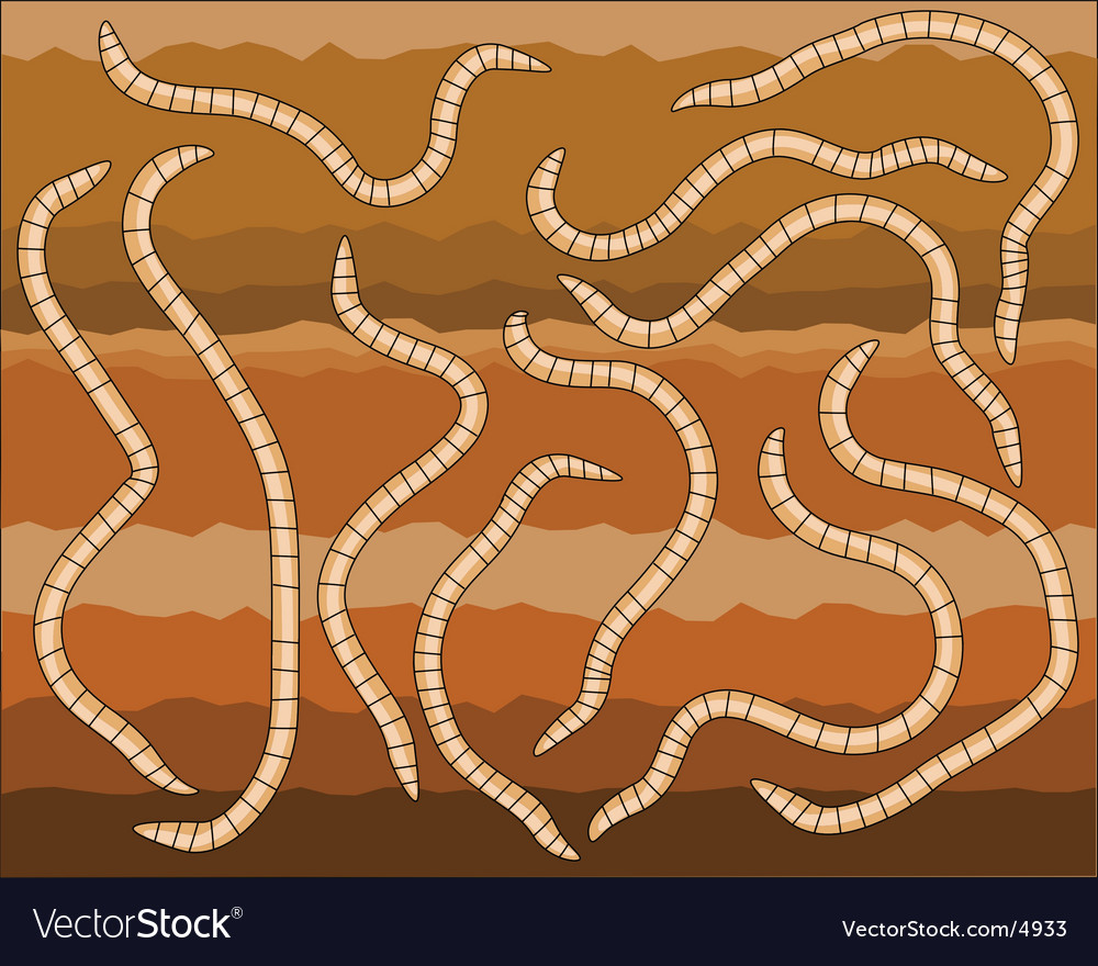 Worms vector | Price: 1 Credit (USD $1)