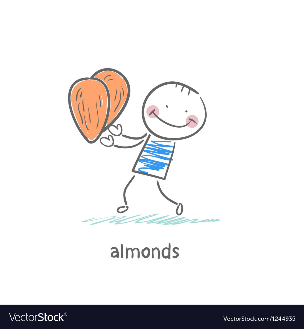 Almonds and people vector | Price: 1 Credit (USD $1)