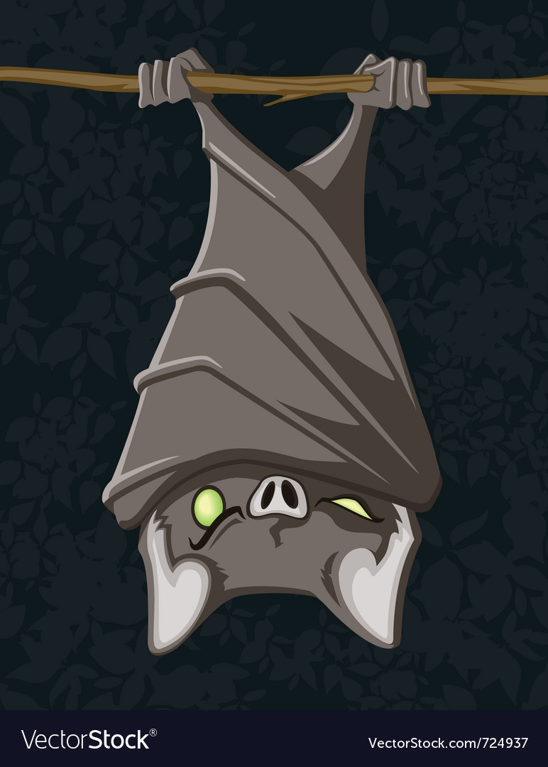 Hanging bat vector | Price: 3 Credit (USD $3)