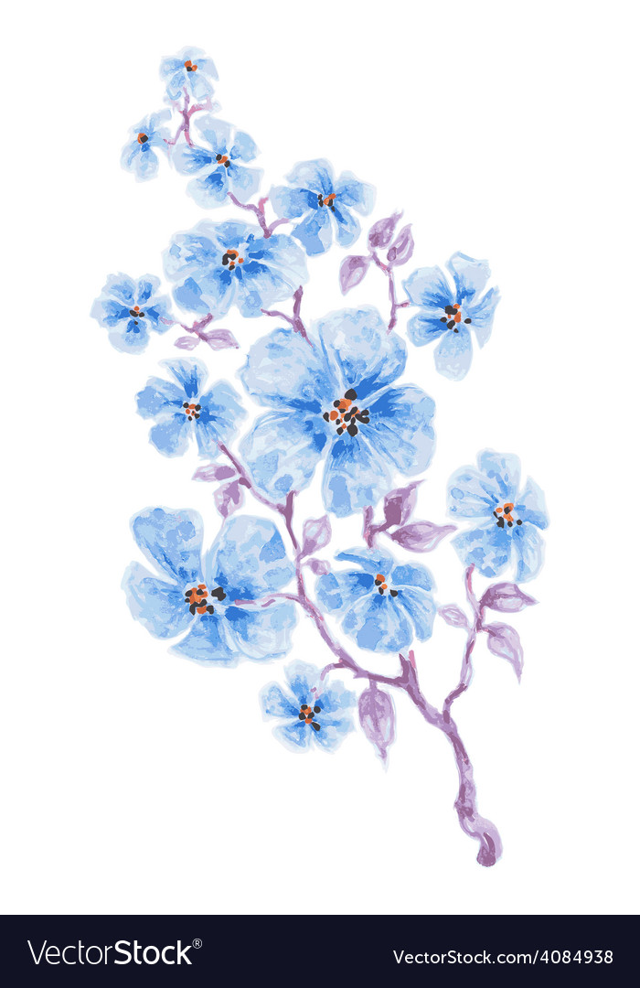 Blue flowers branch watercolor vector | Price: 1 Credit (USD $1)