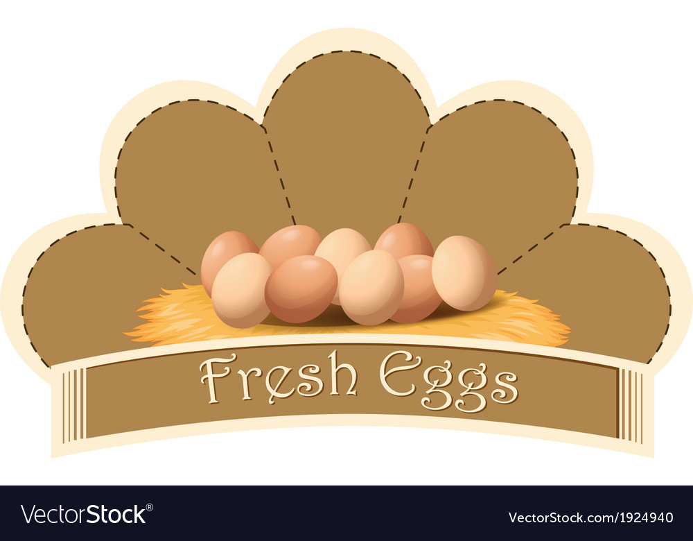 A fresh eggs label with eggs vector | Price: 1 Credit (USD $1)