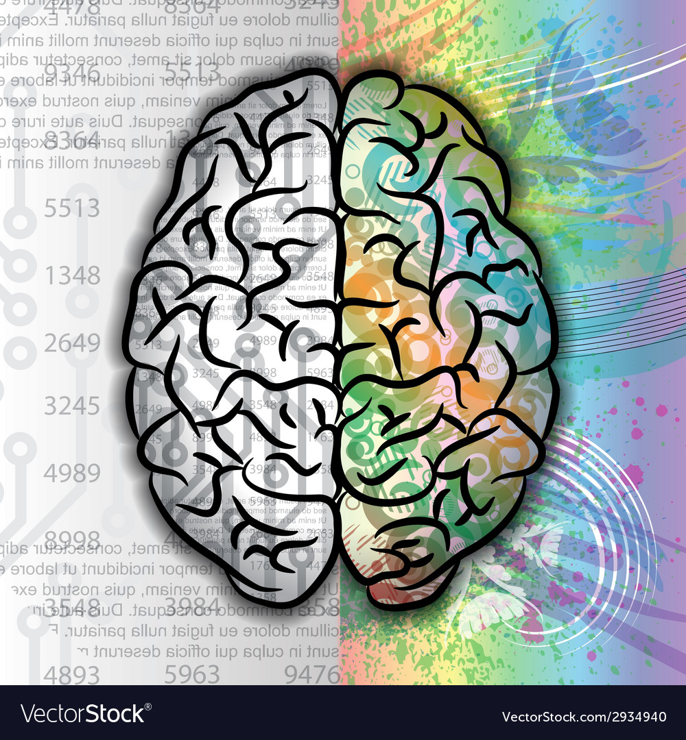 Human brain color pattern vector | Price: 1 Credit (USD $1)