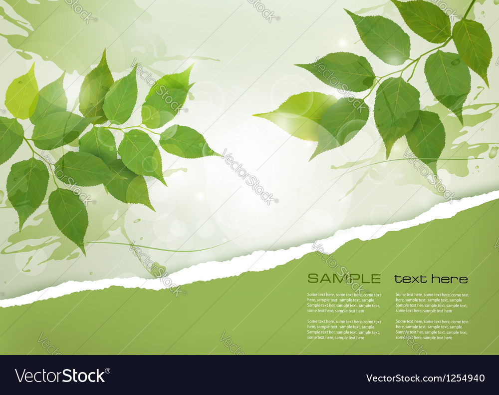 Nature background with green spring leaves and vector | Price: 1 Credit (USD $1)
