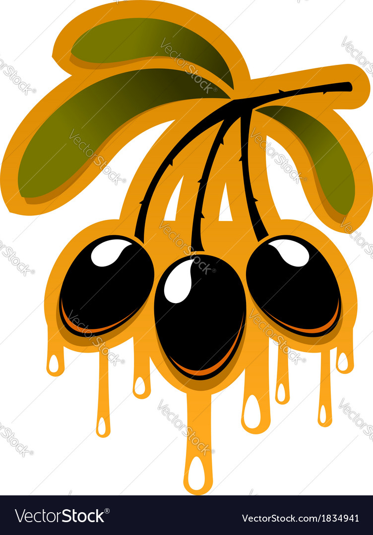 Bunch off olives dripping olive oil vector | Price: 1 Credit (USD $1)
