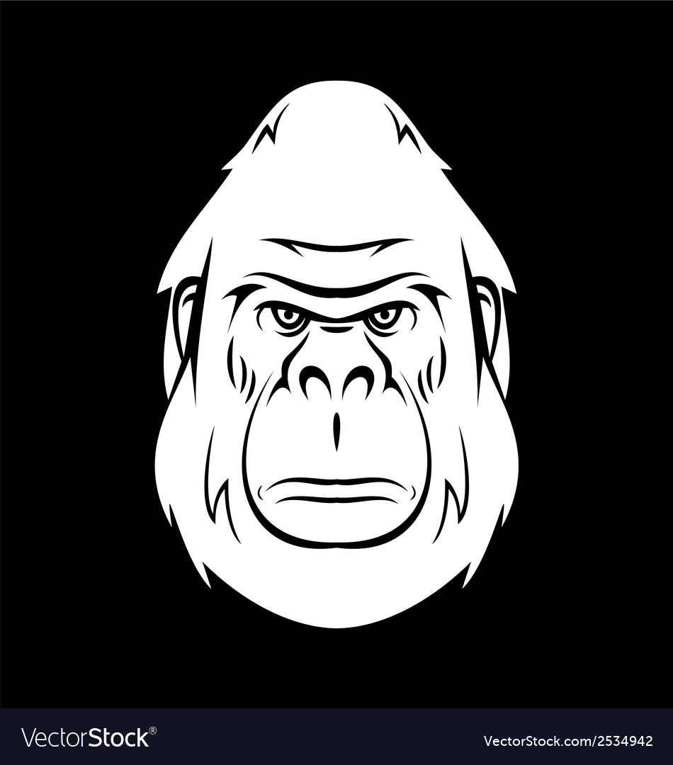 White gorilla head vector | Price: 1 Credit (USD $1)