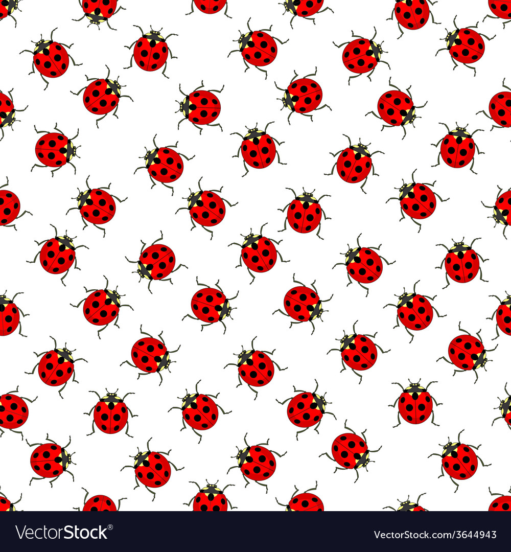 Ladybug pattern vector | Price: 1 Credit (USD $1)