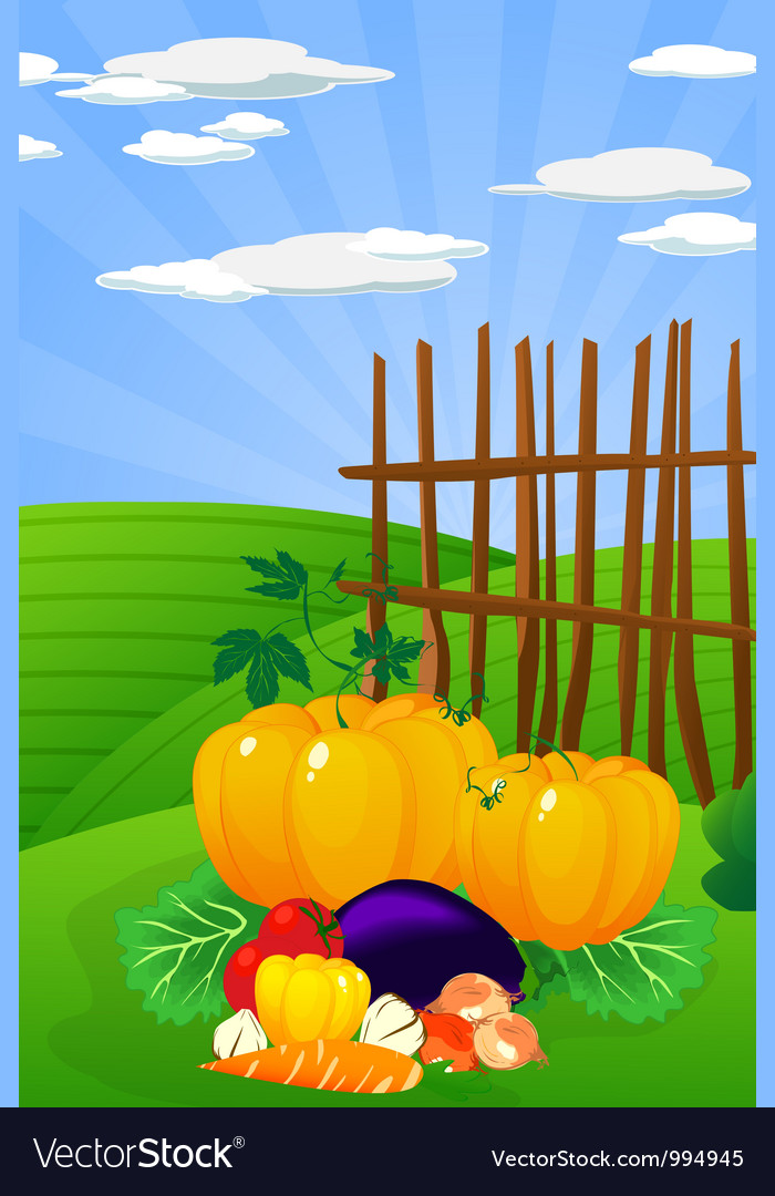Harvest time vector | Price: 1 Credit (USD $1)