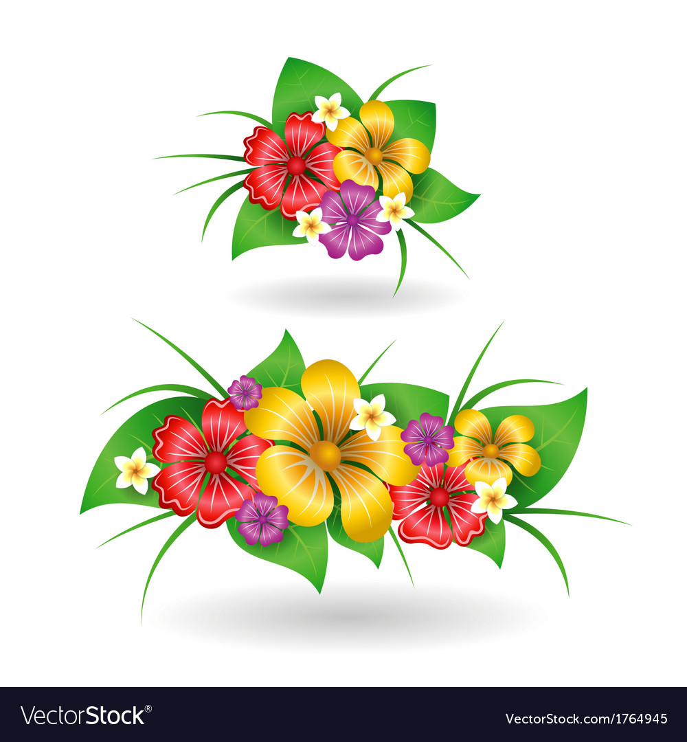 Tropical flowers decor elements vector | Price: 1 Credit (USD $1)