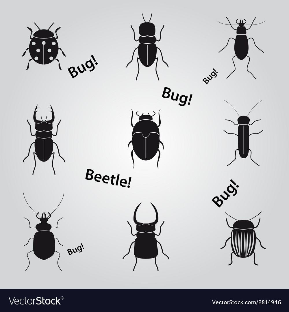 Bugs and beetles icons set eps10 vector | Price: 1 Credit (USD $1)