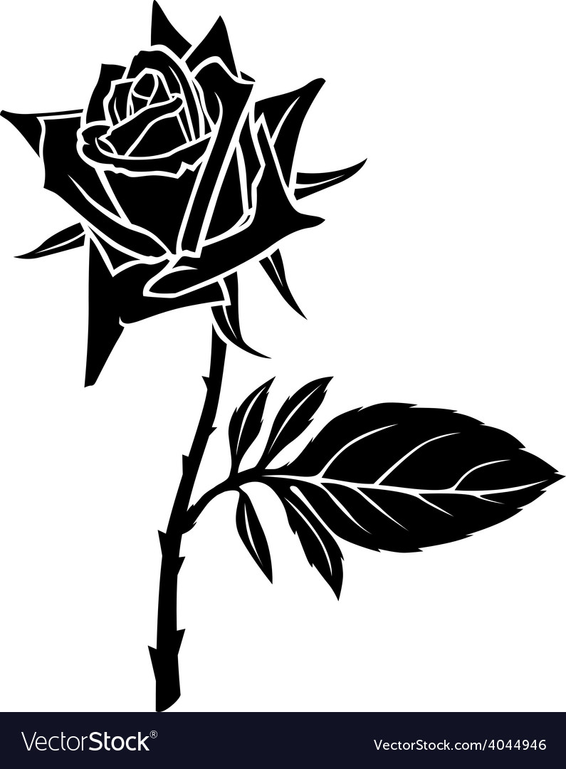 Rose one leaf vector | Price: 1 Credit (USD $1)