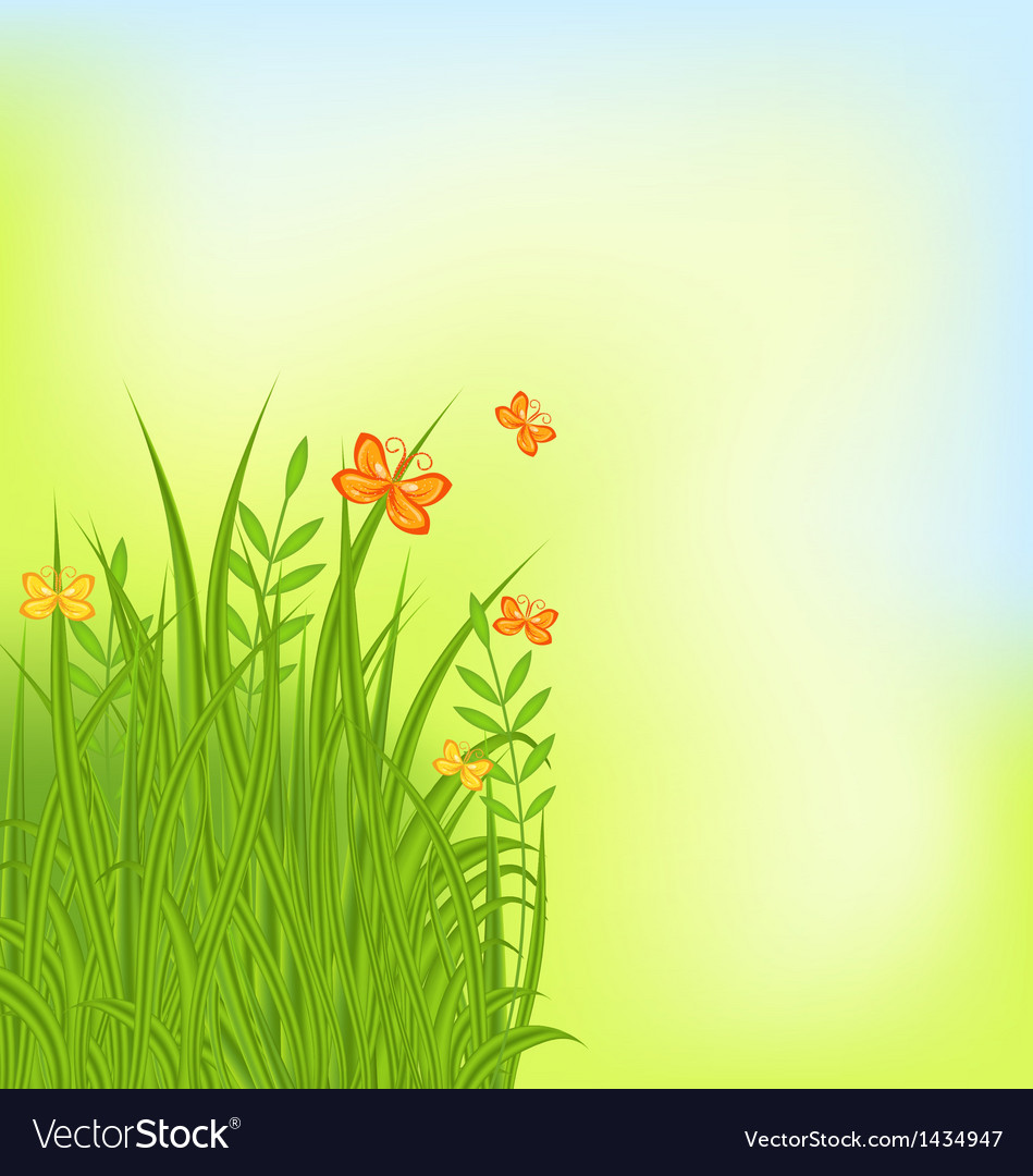 Summer background with grass and butterfly vector | Price: 1 Credit (USD $1)