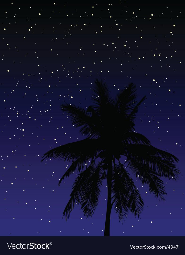 Under the stars vector | Price: 1 Credit (USD $1)