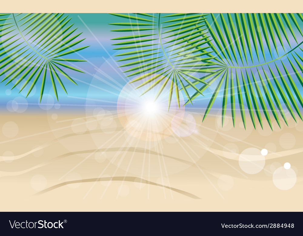 Summer holiday card with beautiful sunny beach vector | Price: 1 Credit (USD $1)
