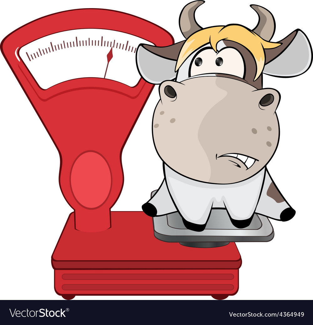 A small cow and weighing scale cartoon vector | Price: 1 Credit (USD $1)