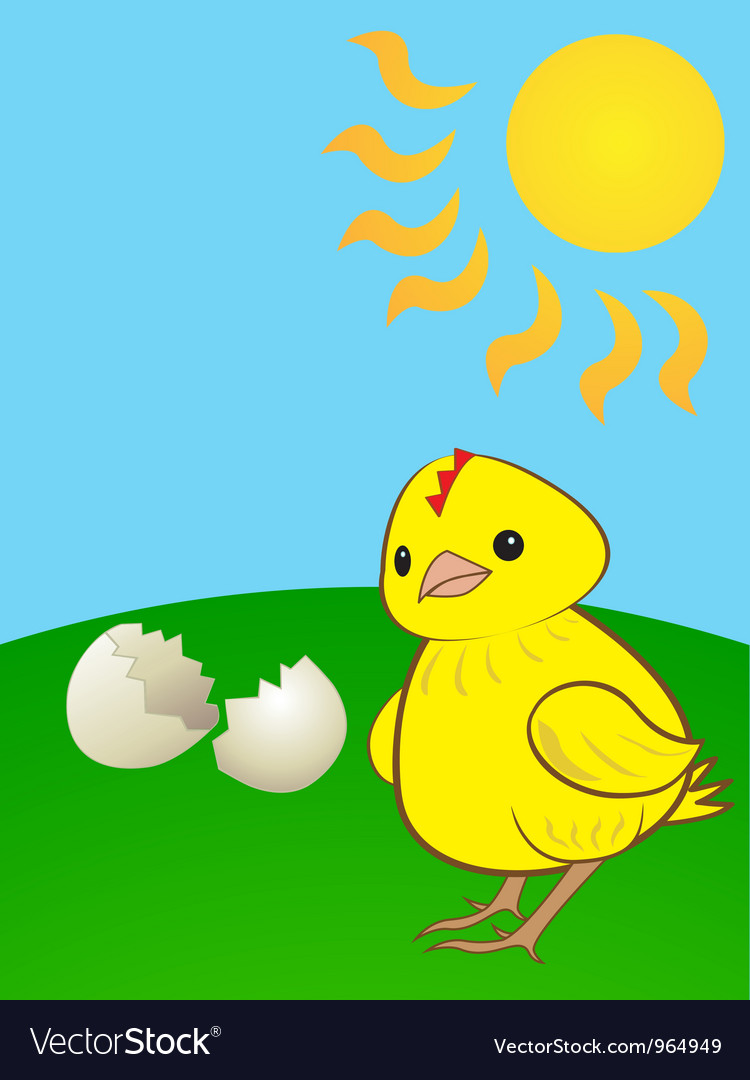 Hatched chicken vector | Price: 1 Credit (USD $1)