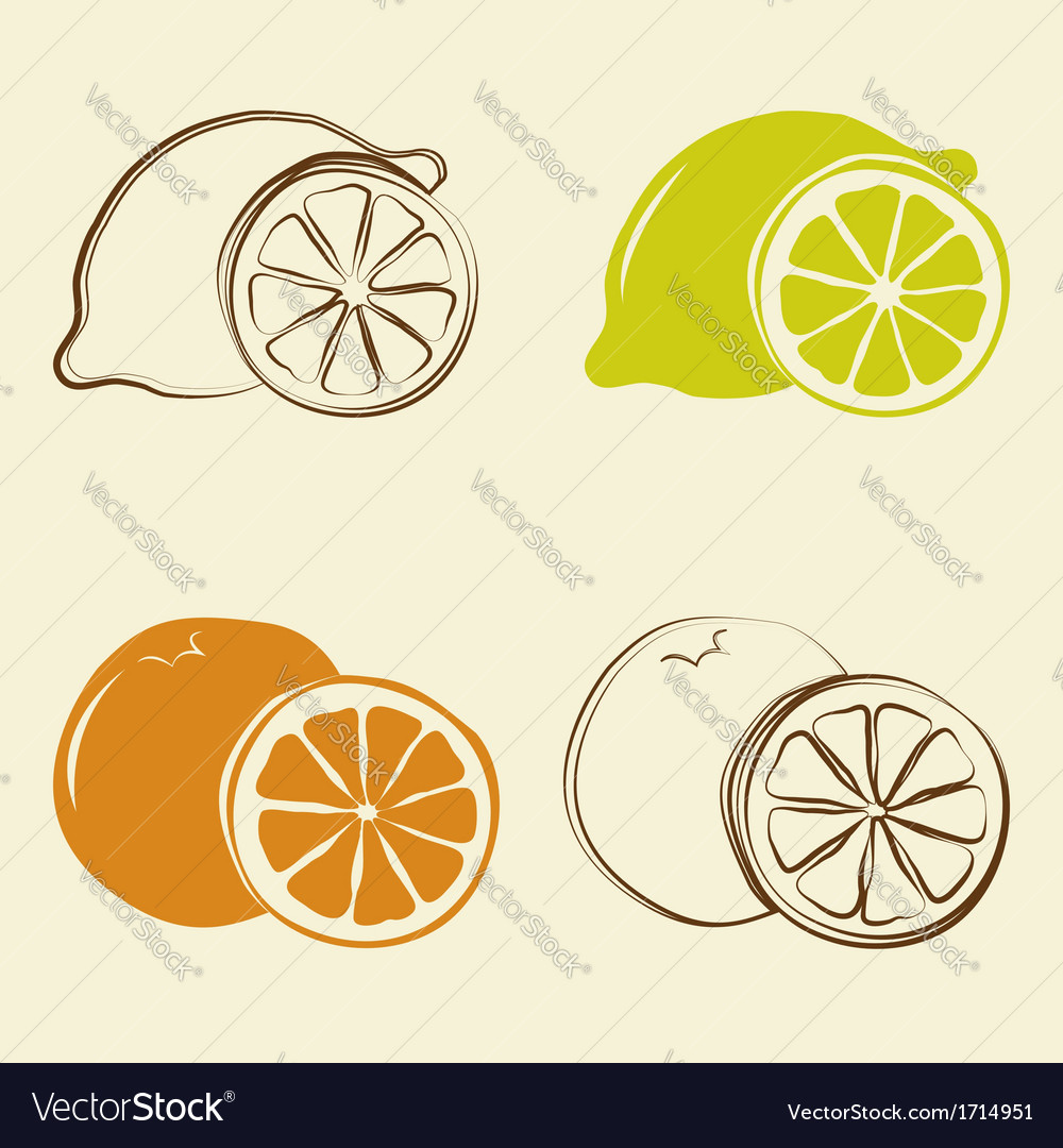 Lemon and orange icons - vector | Price: 1 Credit (USD $1)