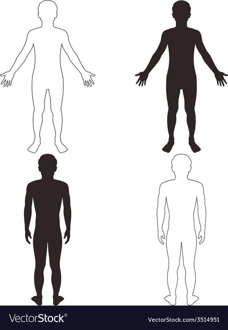 Man body vector | Price: 1 Credit (USD $1)