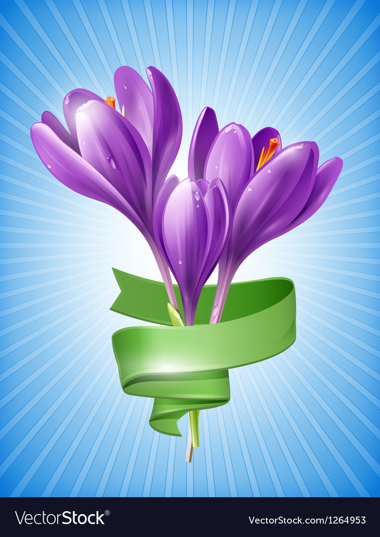 Spring flowers with green ribbon vector | Price: 3 Credit (USD $3)