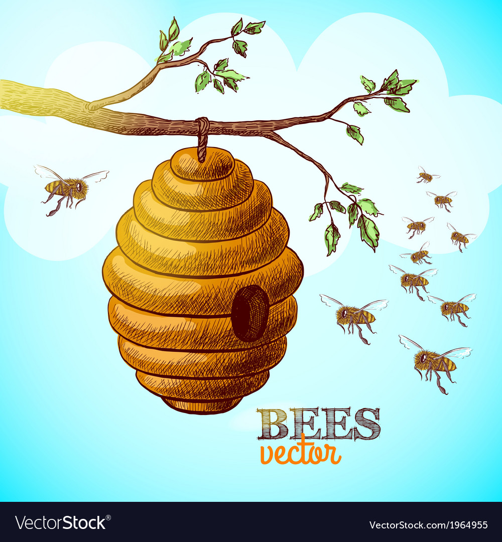 Honey bees and hive on tree branch background vector | Price: 1 Credit (USD $1)