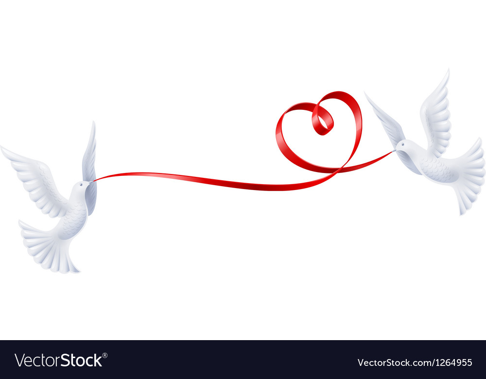 Pigeons with a ribbon in the form of heart vector | Price: 3 Credit (USD $3)