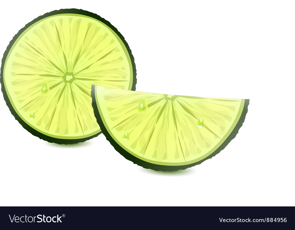 Lime vector | Price: 3 Credit (USD $3)