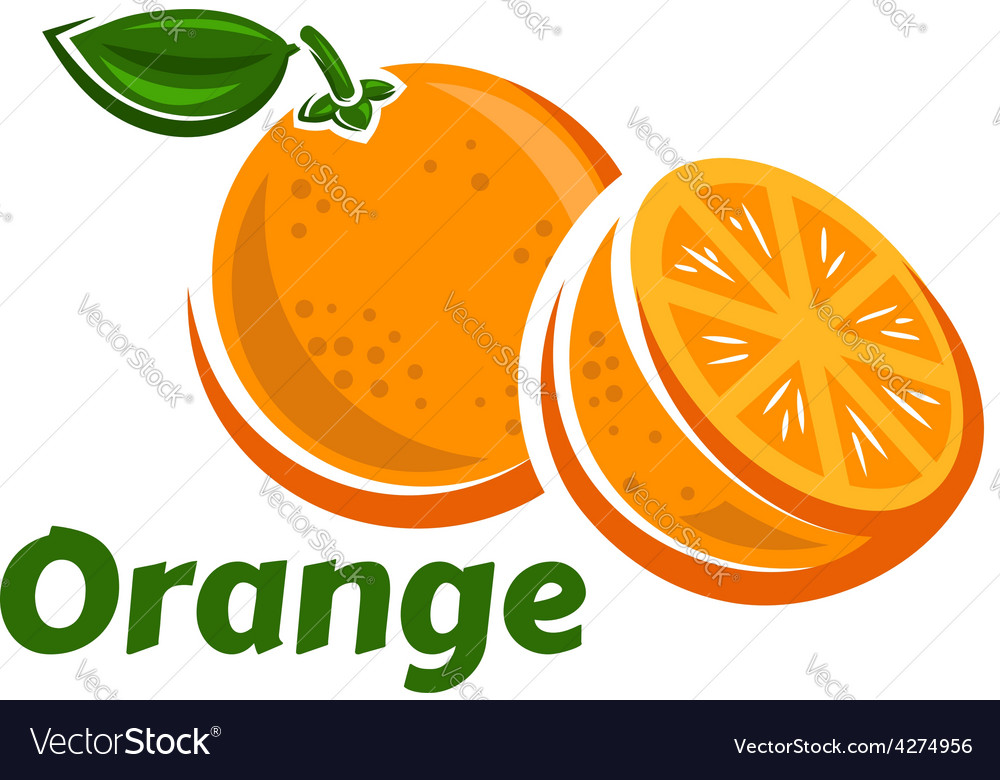 Whole and half of orange fruits vector | Price: 1 Credit (USD $1)