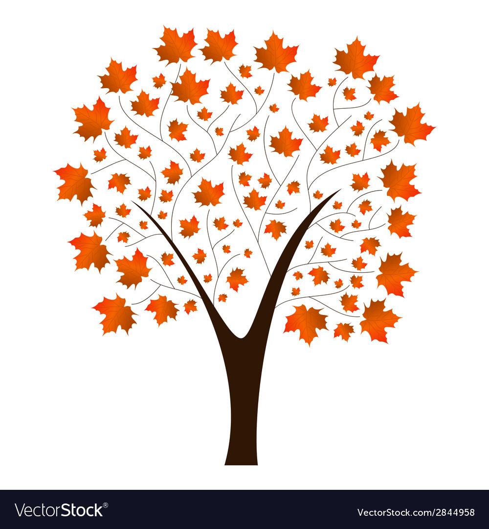 Autumn maple tree vector | Price: 1 Credit (USD $1)