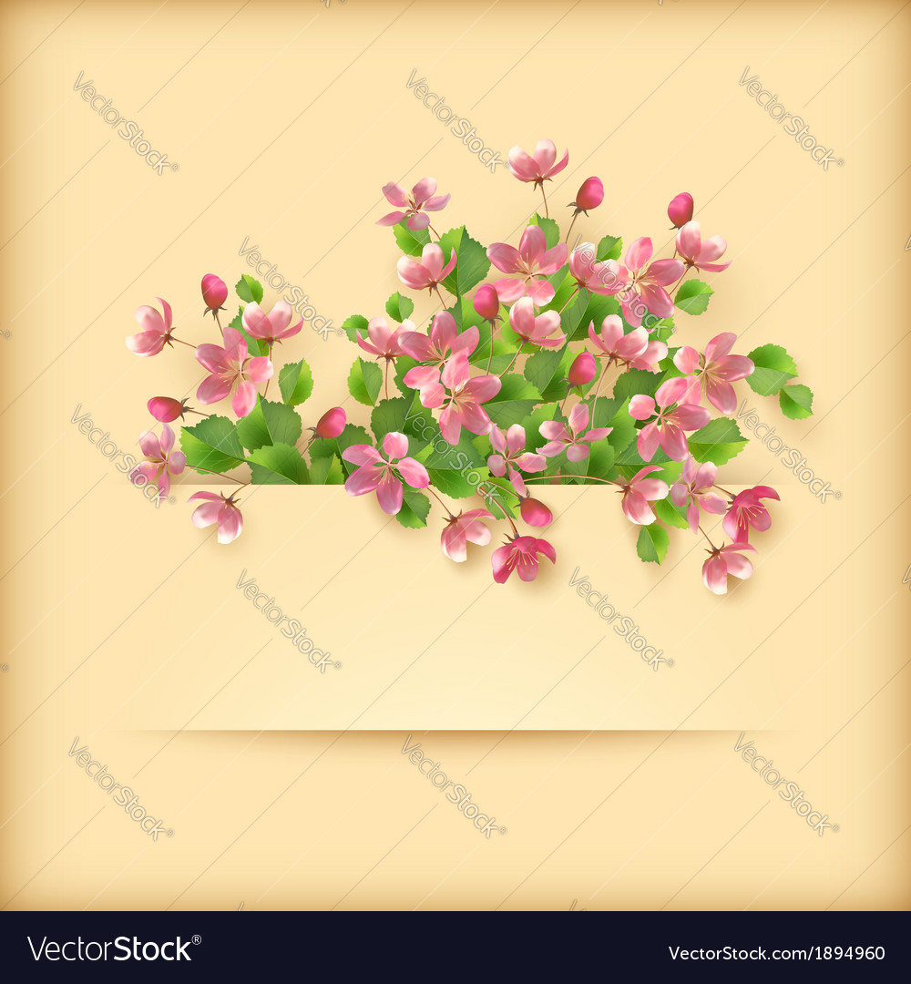 Floral greeting card pink cherry blossom flowers vector | Price: 1 Credit (USD $1)