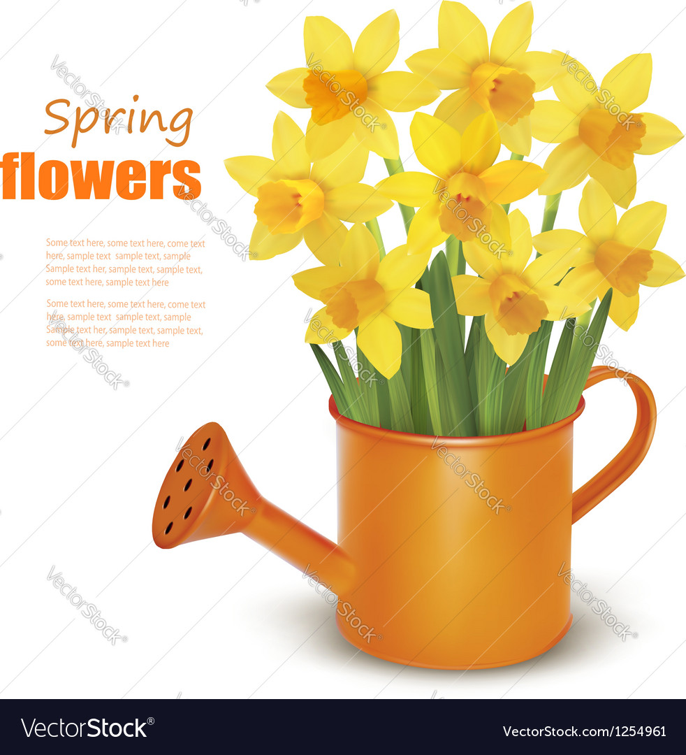 Spring flowers with watering can vector | Price: 1 Credit (USD $1)