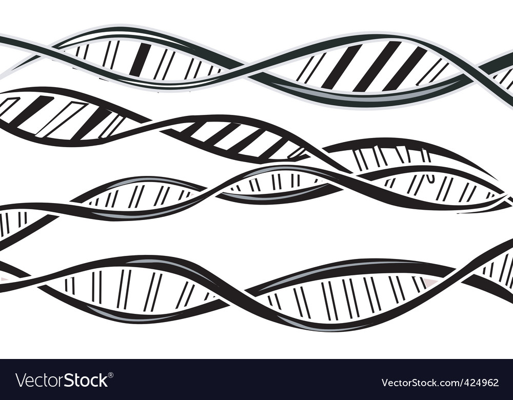 Dna model vector | Price: 1 Credit (USD $1)