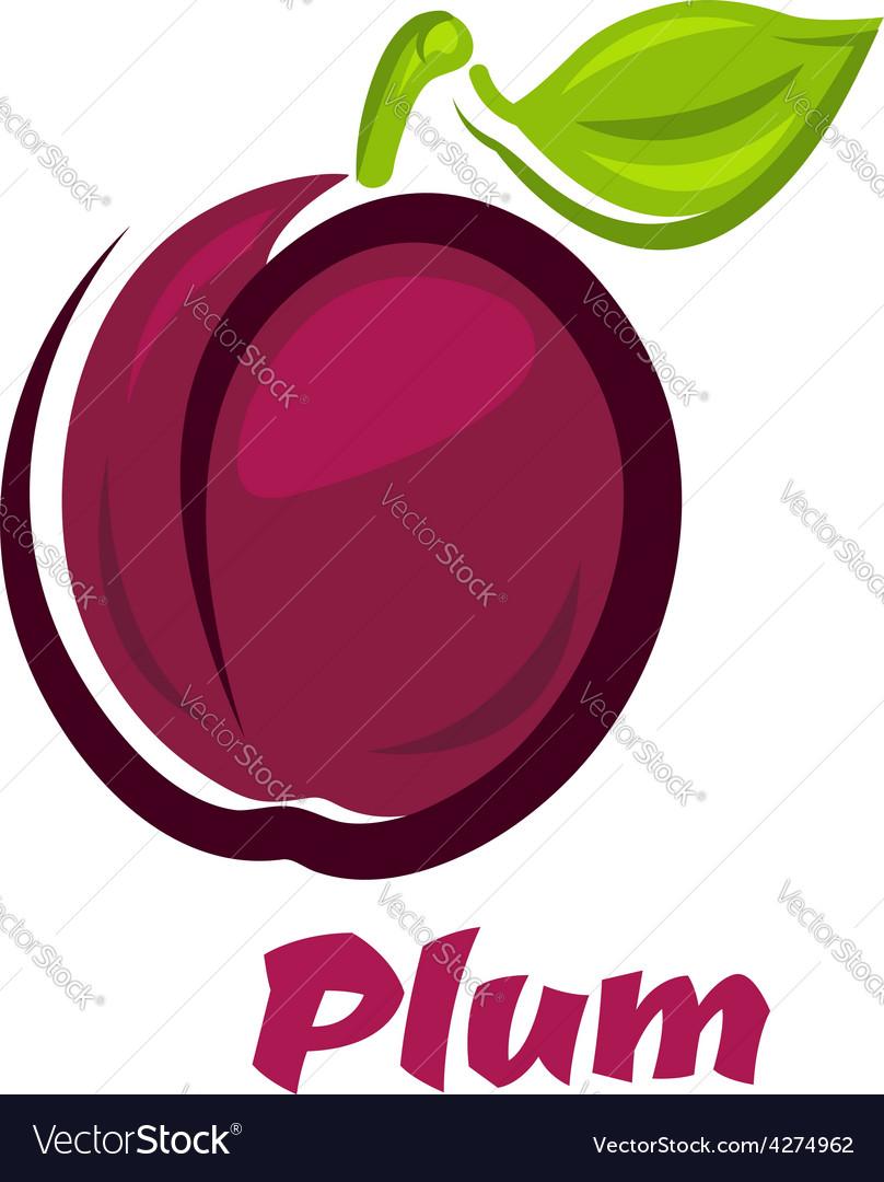 Fresh plum fruit in cartoon style vector | Price: 1 Credit (USD $1)