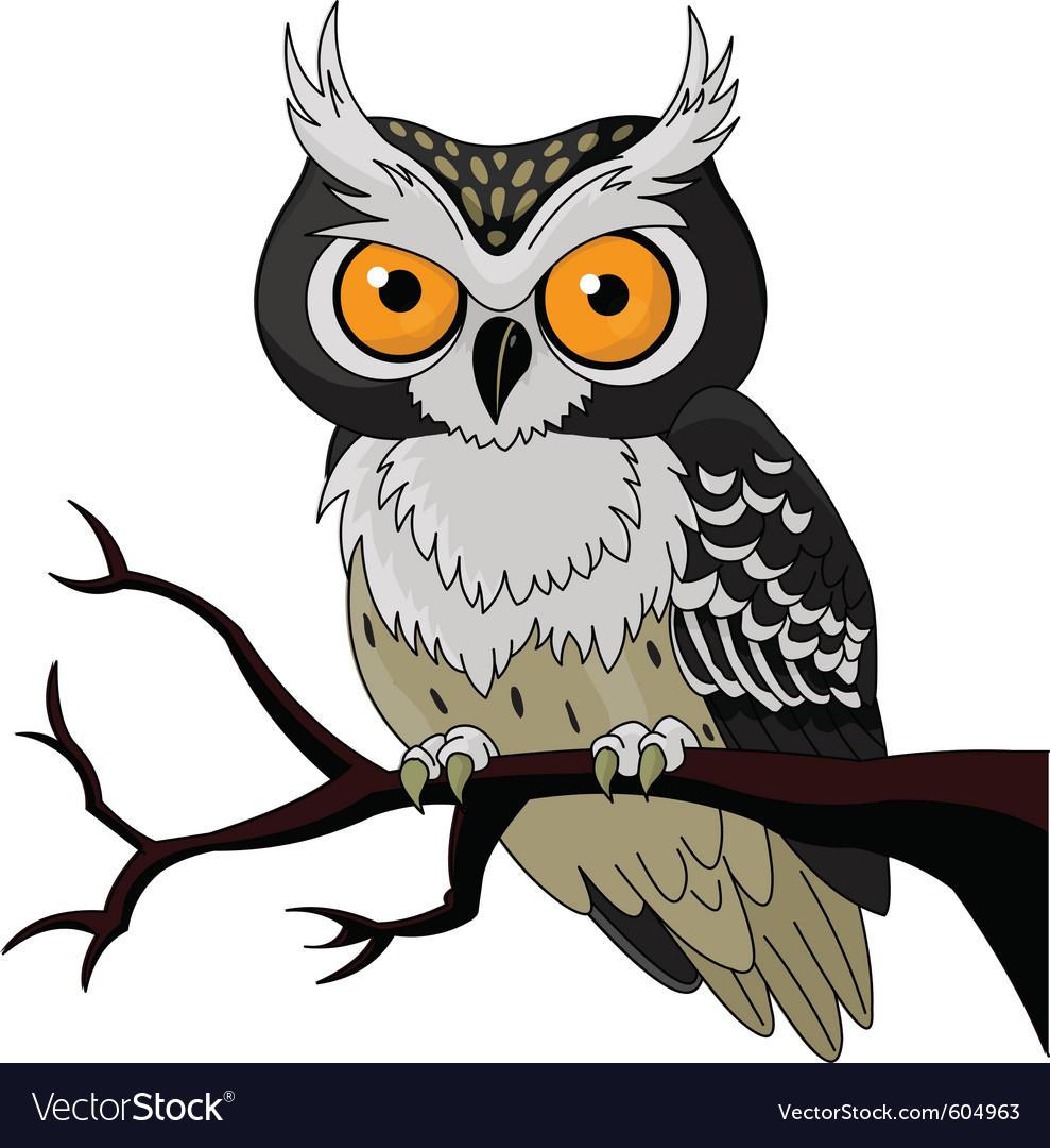 Owl vector | Price: 3 Credit (USD $3)