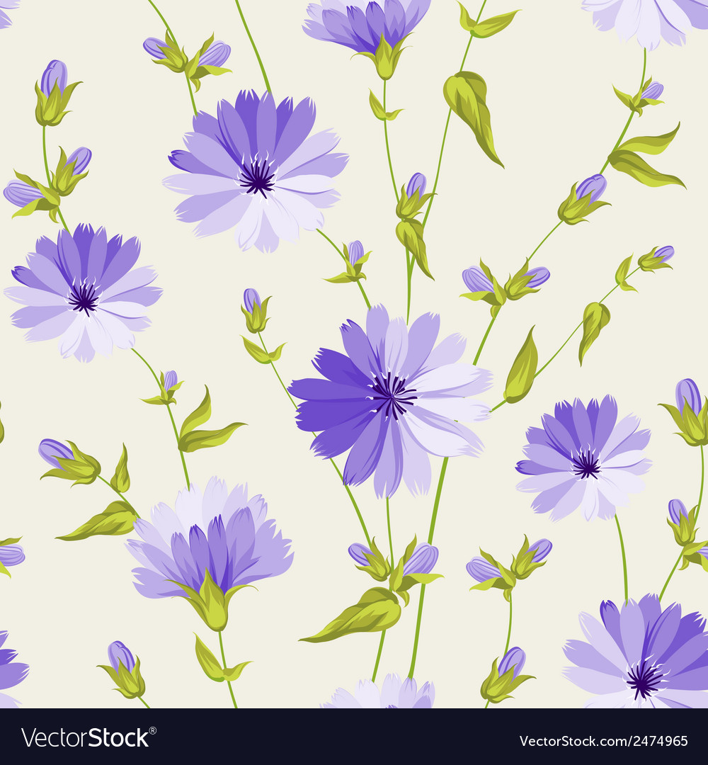 Chicory pattern vector | Price: 1 Credit (USD $1)
