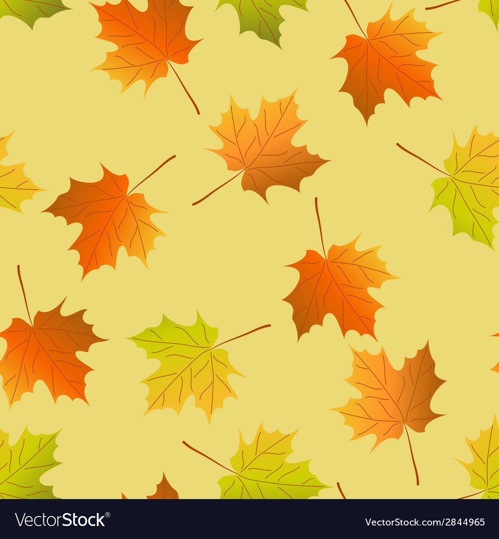 Seamless background autumn maple leaves maple leaf vector | Price: 1 Credit (USD $1)