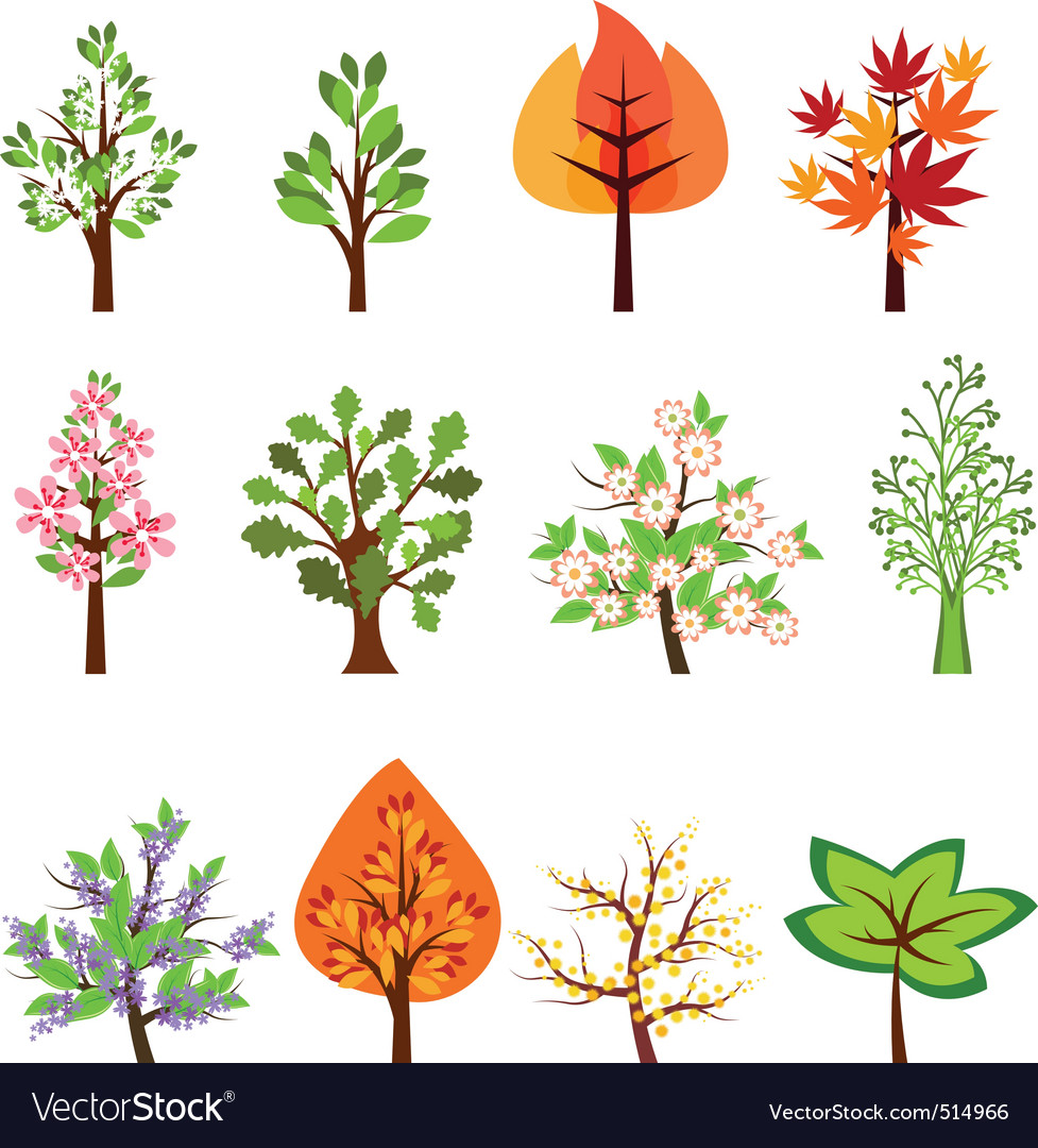 Set of different beautiful trees vector | Price: 1 Credit (USD $1)