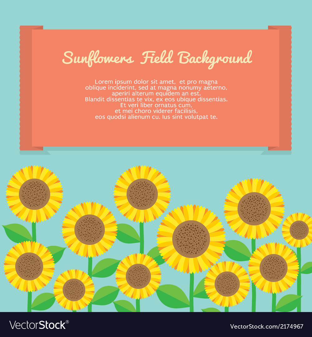 Sunflowers field background vector | Price: 1 Credit (USD $1)