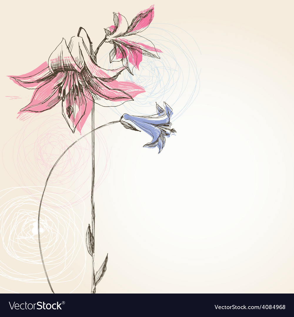 Blooming lily flower greeting card vector | Price: 1 Credit (USD $1)