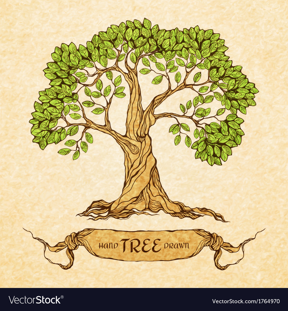 Green tree with place for text vector