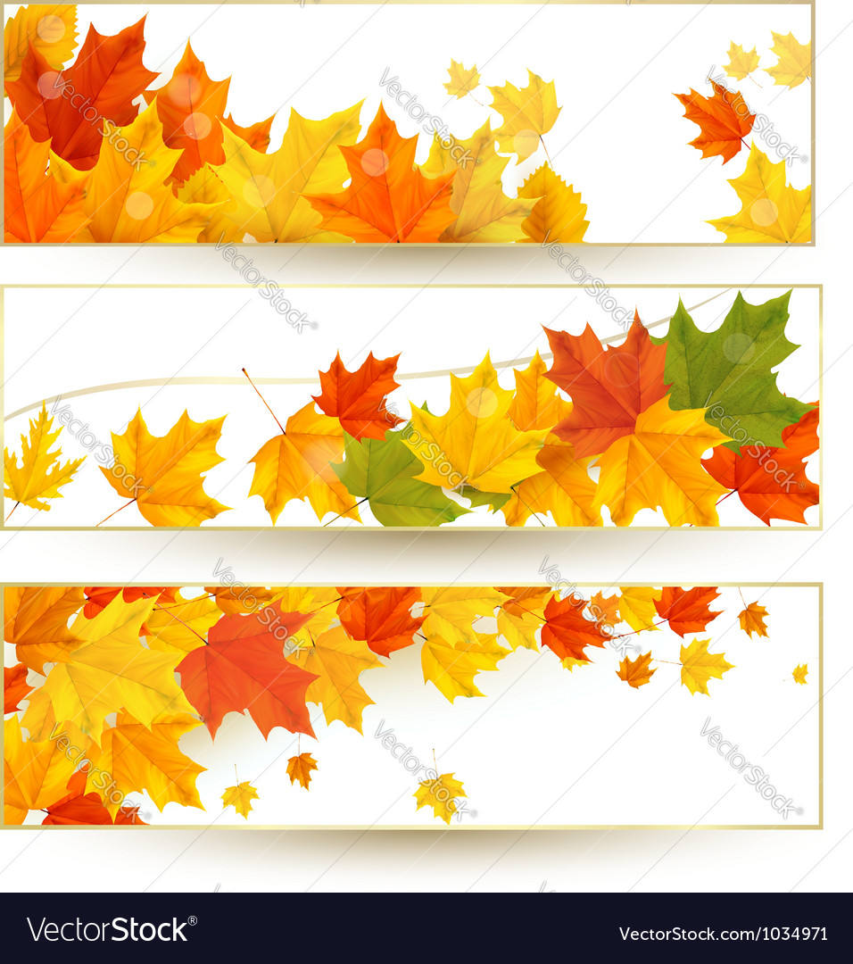 Three autumn banners with colorful leaves in vector | Price: 3 Credit (USD $3)