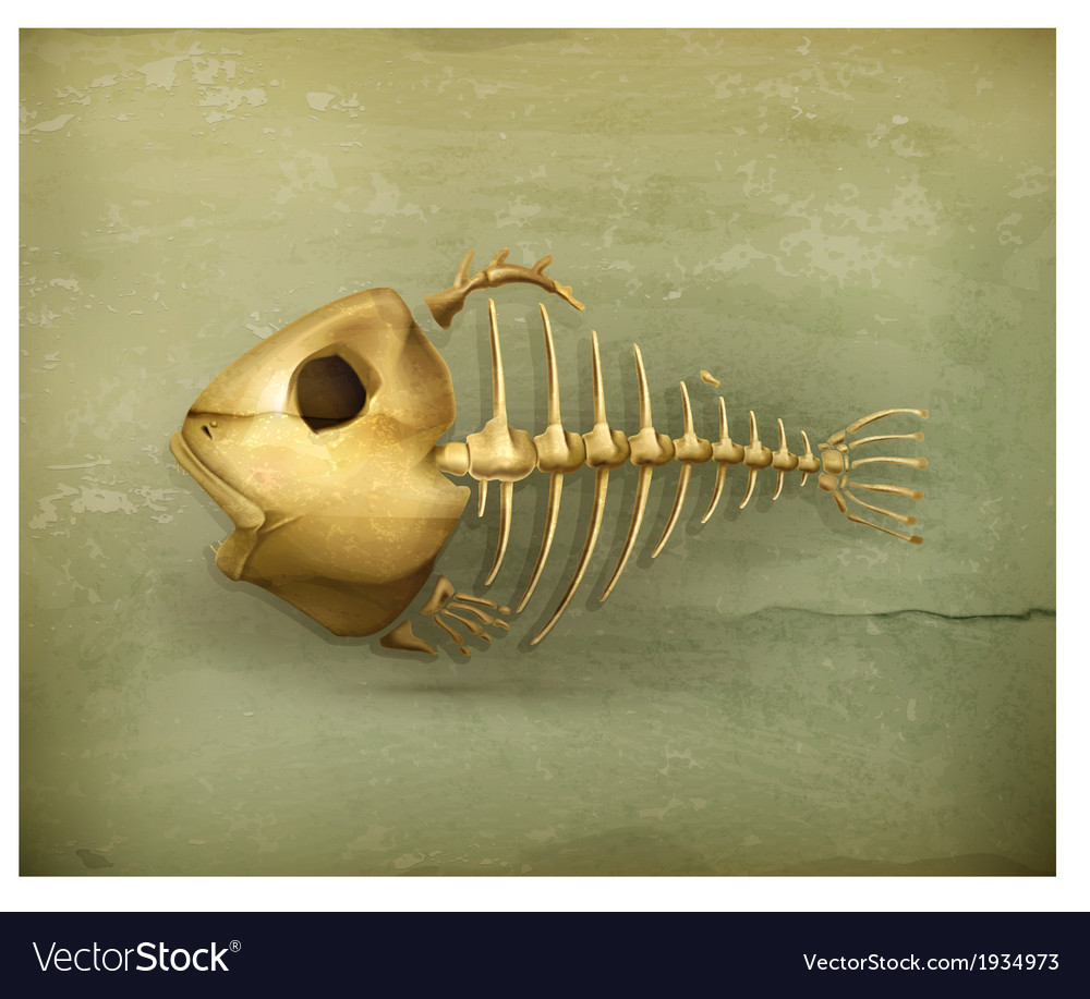 Fish skeleton old style icon vector | Price: 3 Credit (USD $3)