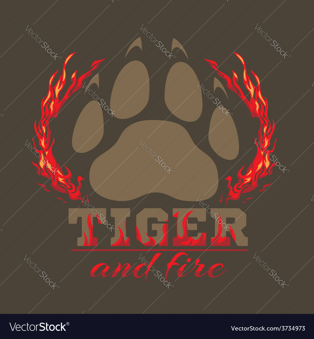 Tiger footprint and fire on dark background vector | Price: 1 Credit (USD $1)