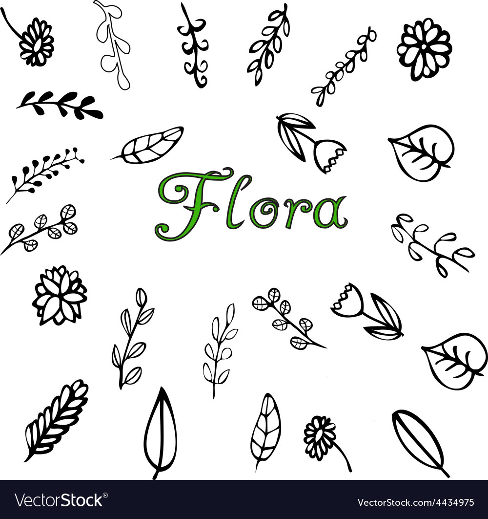 Flora vector | Price: 1 Credit (USD $1)
