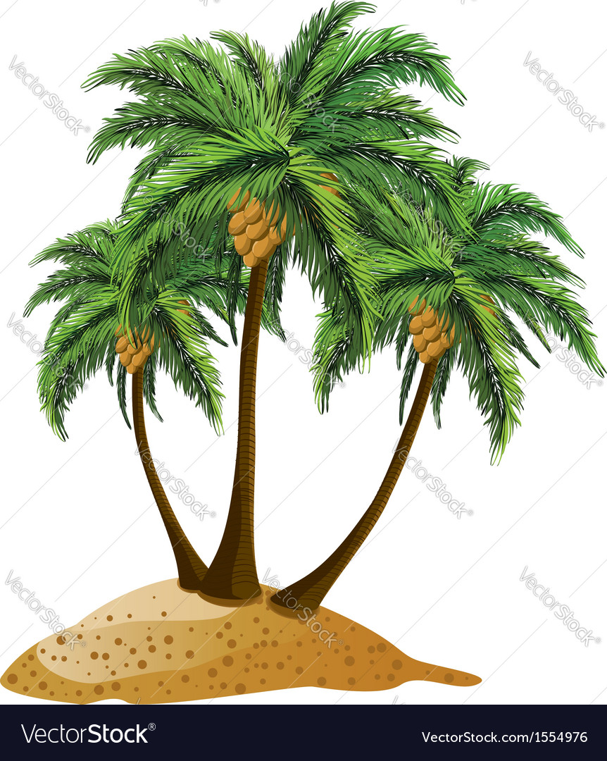Cartoon island with palms vector | Price: 1 Credit (USD $1)