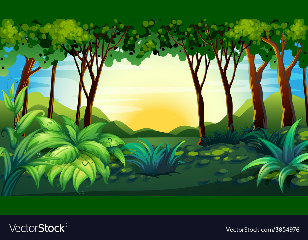 Forest vector | Price: 3 Credit (USD $3)