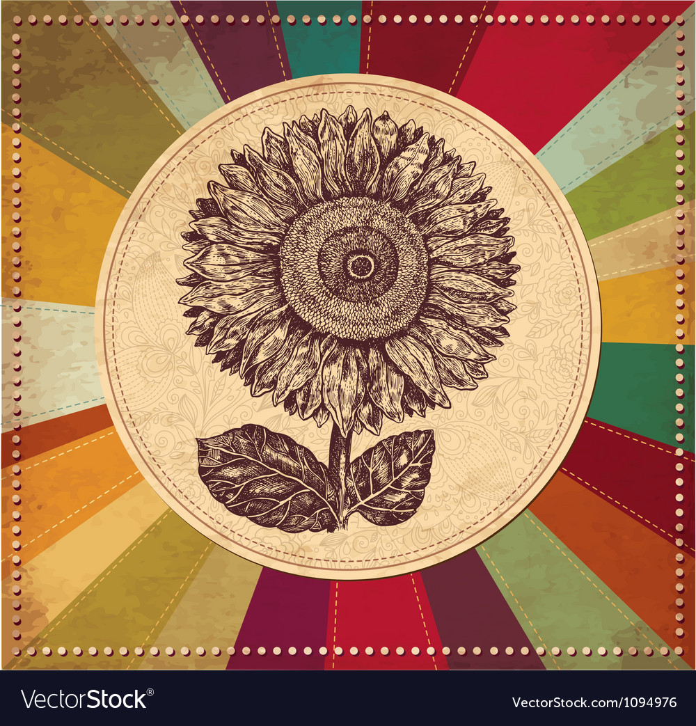 Sunflower vintage background vector | Price: 1 Credit (USD $1)
