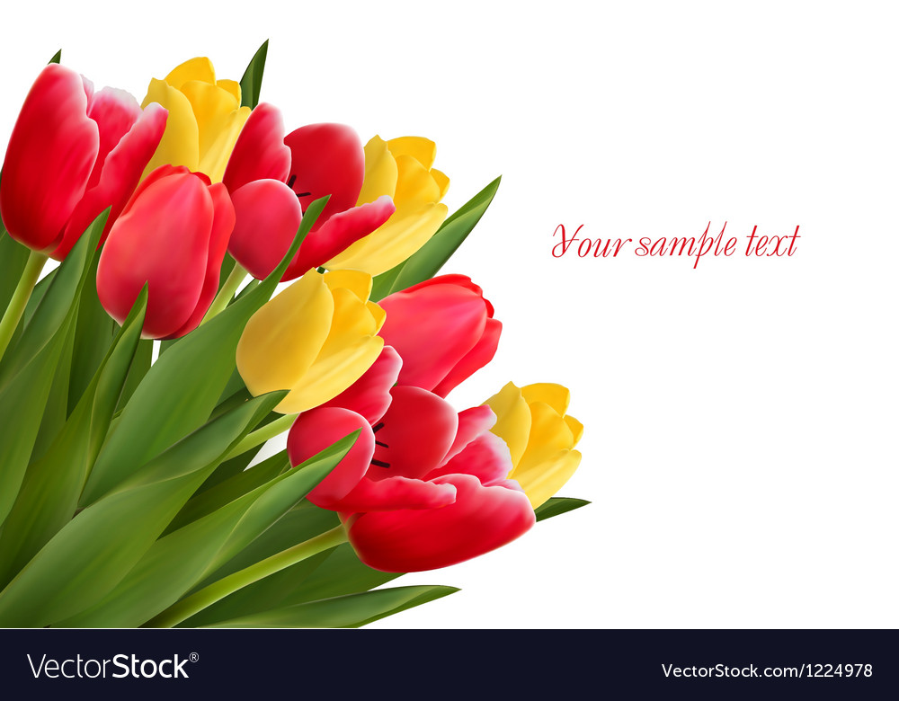 Bouquet with red and yellow flowers in white vector   Price: 3 Credit (USD $3)