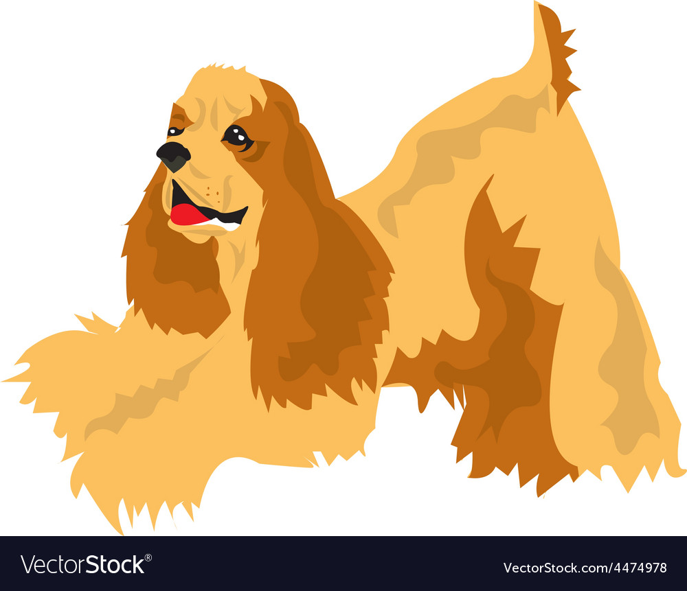Cocker spaniel vector | Price: 1 Credit (USD $1)