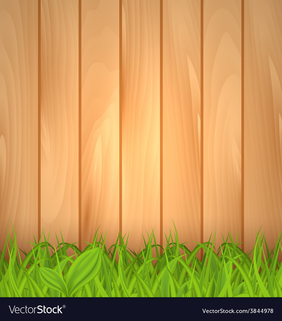 Freshness spring green grass and wooden wall - vector | Price: 1 Credit (USD $1)