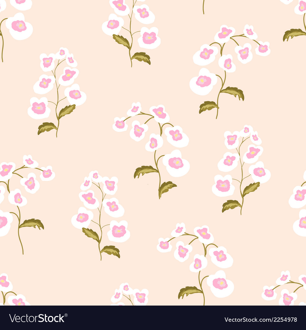 Nemesia flowers seamless pattern vector | Price: 1 Credit (USD $1)