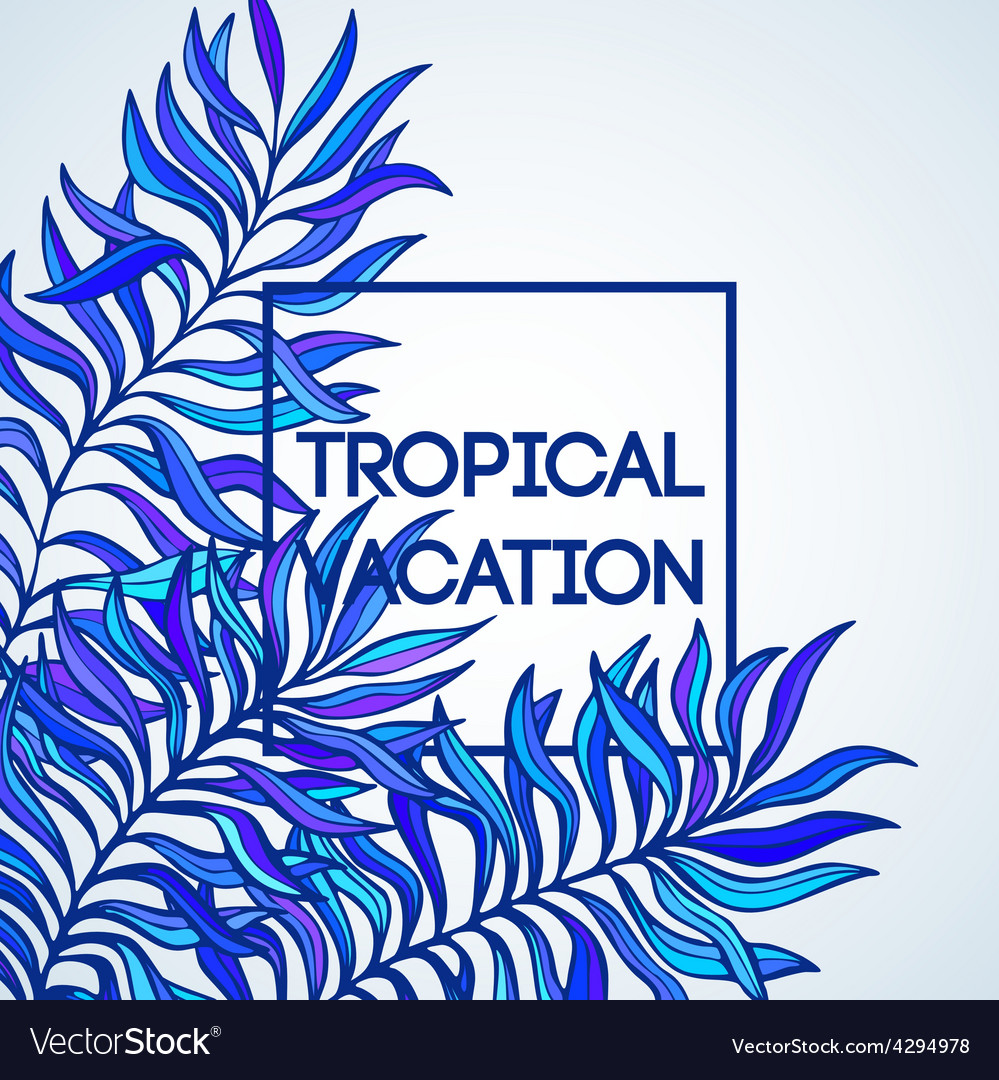 Summer time of tropical palm vector | Price: 1 Credit (USD $1)